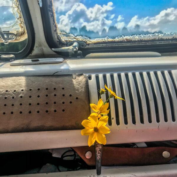 Magnetic Car Flower Vase - Junk In This Truck