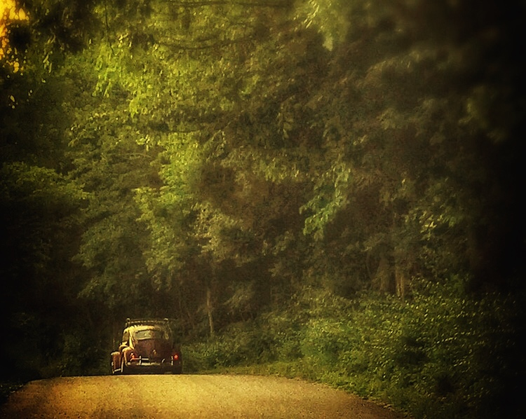 Vintage VW Bug Country Road - Junk In This Truck